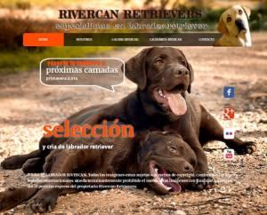 montar tiendas online para perros